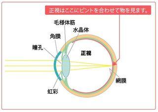 正視の図.JPG