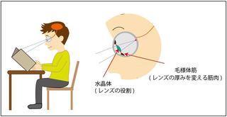 眼球断面図.JPG